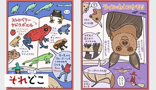 1万円で地球上の森羅万象が学べる『図鑑』を徹底解説