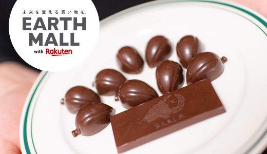 「カカオ豆から手作りチョコレートキット」のチョコづくり奮闘記
