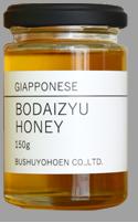国産生まれの菩提樹養蜂