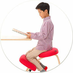 バランスチェア イージー 学習椅子