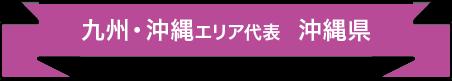 九州・沖縄エリア代表 沖縄県