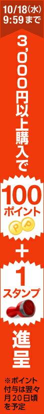 今なら3,000円以上購入で100ポイント進呈!