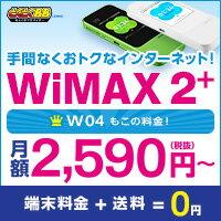 iPad mini4 Wi-Fiモデル 16GB + Pocket WiFi 305ZT