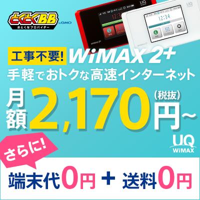 GMO とくとくBB WiMAX 2+ライトプラン