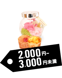 予算別で探す:予算2,000円~4,000円未満