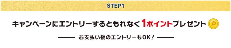 【STEP1】キャンペーンにエントリーするともれなく1ポイントプレゼント(お支払い後のエントリーもOK!)