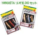 ヤマリア yamaria  エギ王 dvdセット b
