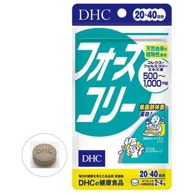 DHC フォースコリー 20日分(80粒)