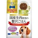 DHCのペット用健康食品 犬用 国産生肉使用の贅沢ごはん チキン シニア 700g