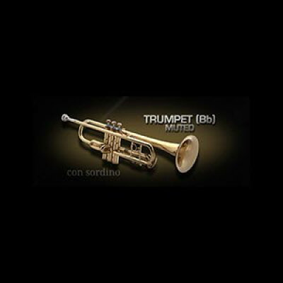 Vienna Symphonic Library/VIENNA TRUMPET Bb MUTED