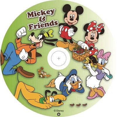 ヴァーテックス 録画用DVD-R DR-120DVX.CD1.5CA