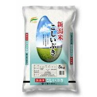 藤井商店 新潟米 こしいぶき 5Kg