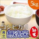 中橋 BG無洗米こしひかり黄金 5kg