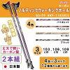 naito ナイト工芸 カーボンノルディックウォーキングポールセレクトNWP-1160803