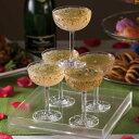 割れない グラス シャンパンタワー  トレイ付 クリア トライタン