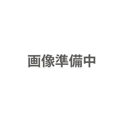 2段伸縮ステッキ夜桜 VH8214