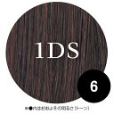 N.B.A.A. ヒューマンヘアー ストレート 1DS NB-E251 70cm 47g+α