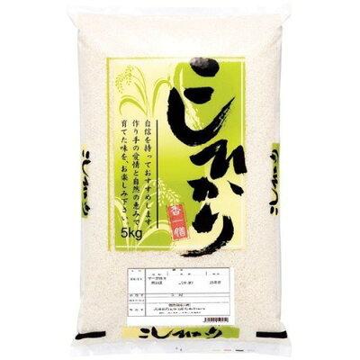 平成30年度産 石川県産こしひかり(5kg)