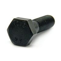 サンコーインダストリー 強度区分10.9六角ボルト日本ファスナー製 16X170