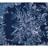 THA BLUE HERB(生産限定盤)/CD/TBHR-CD-030