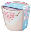 聖新陶芸 GD-45301 盆彩栽培セット 桜