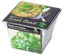 ガーデニング デリッシュガーデン バジル栽培 ブリキ缶で育てる栽培キット