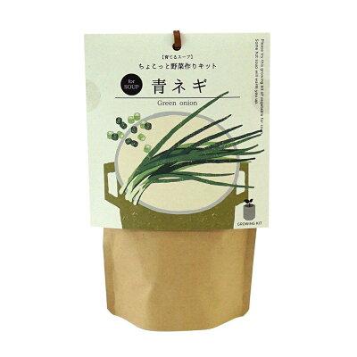 Grow Soup 育てるスープ 青ネギ SEISHIN 聖新陶芸 GD-79503