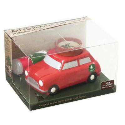 オート プランツ カー(mini Car):ワイルドストロベリー
