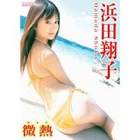 浜田翔子 微熱/DVD/LCDV-40244