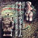 ネイティヴ・ドリーム 縄文鼓とメキシコ古代楽器の饗演土取利行+トリブ (30RG-4)