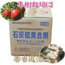 【殺虫殺菌剤】石灰硫黄合剤 10L