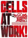 はたらく細胞 4(完全生産限定版)/Blu-ray Disc/ANZX-14707