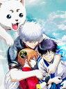銀魂 THE FINAL(完全生産限定版)/DVD/ANZB-14028