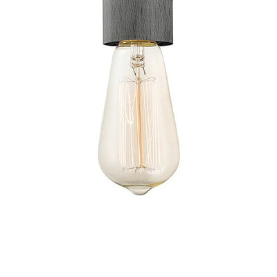 AW-BU-1148 E26 40W ST58カーボン電球(クリア) 白熱球タイプ