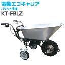 和コーポレーション 個人宅 電動エコキャリア21 3輪 バケットタイプ ラグタイヤ KT-FBLZ A130528