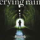 crying rain/CDシングル(12cm)/XNDC-30030