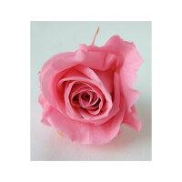 プリマベーラ Bebe 20輪 ピンク プリザーブドフラワー 花材 ローズ プリマヴェーラ ベベ 約2~2.5cm