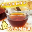 しょうが紅茶 三角ティーバッグ 3.0g×5コ