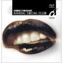 アニマル・ソーシャル・クラブ/CD/APTI-4019