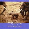 アフリカン・ドリーム/CD/MHACD-2648