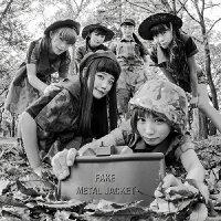 FAKE METAL JACKET/CD/DDCZ-2069