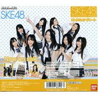 ジャンボカードダス SKE48 コレクションプレート ノーマルプレート3