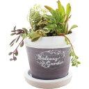 暮らし良い品 植木鉢 ラウンドバンドポット M ラベンダー 13*13*11cm(1コ入)