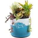 暮らし良い品 植木鉢 チューブポット S ブルー 11.5*11.5*9.5cm(1コ入)