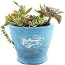 暮らし良い品 植木鉢 コニカルポット S ブルー 11.5*11.5*9cm(1コ入)