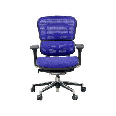 エルゴヒューマン オフィスチェア ベーシック(ヘッドレストなし)3Dメッシュ EH-LAM-KMD-35 ブルー