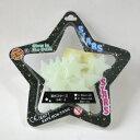 夜光(蓄光)スターズ・ピース24 STARS24