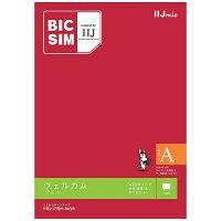 IIJマルチSIM BIC SIMタイプA データ通信専用・SMS対応 IMB159