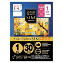 IIJ Regular SIM BIC SIM JAPAN TRAVEL SIM/1GB Prepaid・Data only・SMS unavailable IM-B190
