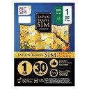 IIJ Nano SIM BIC SIM JAPAN TRAVEL SIM/1GB Prepaid・Data only・SMS unavailable IM-B192